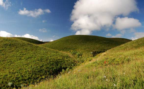 Kitulo Plateau National Park