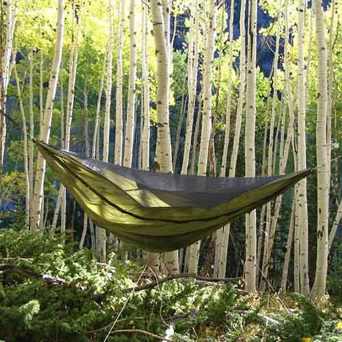 blackbird tent